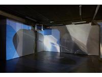 [http://ualresearchonline.arts.ac.uk/11975/11.hasmediumThumbnailVersion/polarised%205.jpg]