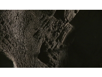 [http://ualresearchonline.arts.ac.uk/12660/1.hasmediumThumbnailVersion/Bernd_Behr-Akeley_Inside_the_Elephant-2014.jpeg]