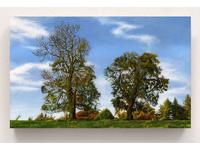 [http://ualresearchonline.arts.ac.uk/12730/10.hasmediumThumbnailVersion/Chillingham%20Trees.jpg]