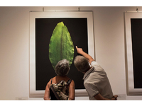 [http://ualresearchonline.arts.ac.uk/13088/6.hasmediumThumbnailVersion/GENUS-006.jpg]