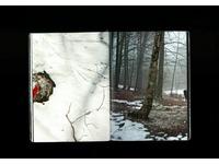 [http://ualresearchonline.arts.ac.uk/13268/5.hasmediumThumbnailVersion/Screen_Shot_2017-01-21_at_4.36_.07_PM_.png]