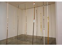 [http://ualresearchonline.arts.ac.uk/13749/2.hasmediumThumbnailVersion/Reinforcements%2010.JPG]