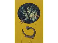 [http://ualresearchonline.arts.ac.uk/1765/2.hasmediumThumbnailVersion/Wasp_Wasp.jpg]