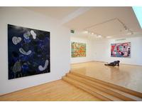 [http://ualresearchonline.arts.ac.uk/1857/4.hasmediumThumbnailVersion/Bayart_gallery_4.JPG]