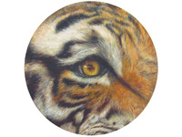 [http://ualresearchonline.arts.ac.uk/2242/7.hasmediumThumbnailVersion/9._Tyger_Tyger.jpg]