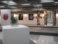 [http://ualresearchonline.arts.ac.uk/2347/6.hasmediumThumbnailVersion/When_Photography_%26_Drawing_Meet_Fashion_installion_1.jpg]