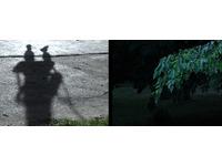 [http://ualresearchonline.arts.ac.uk/3889/19.hasmediumThumbnailVersion/image7.jpg]