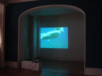 [http://ualresearchonline.arts.ac.uk/6047/6.hasmediumThumbnailVersion/Mo-Throp-mermaid-inst.jpg]