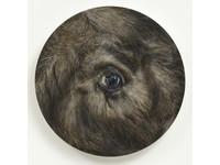 [http://ualresearchonline.arts.ac.uk/9334/79.hasmediumThumbnailVersion/The-Beast-c-Mark-Fairninton-Peter-White-FXP-Photography.jpg]