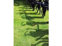 [http://ualresearchonline.arts.ac.uk/9700/1.hasmediumThumbnailVersion/20130809_151834.jpg]
